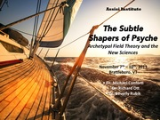 "November Conference: ""The Subtle Shapers of the Psyche: Archetypal Field Theory and the New Sciences"""