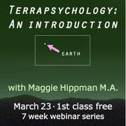 Terrapsychology: An Introduction with Maggie Hippman M.A.