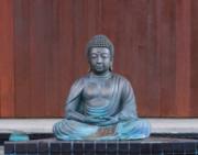 Online Event: Meditation,  Spirit Rock Live: Monday Nights with Jack Kornfield and Friends