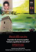 """David Alexandru – Expoziție de pictură și grafică """"Culoare și grafică din vara 2013"""""""
