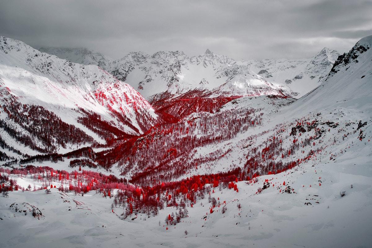 აპლები, მყინვარი, წითელი მყინვარი, წითელი ალპები, qwelly, ფოტოგრაფია, ბლოგი