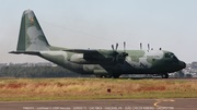 FAB2471 - Lockheed C-130M Hercules - GORDO 71