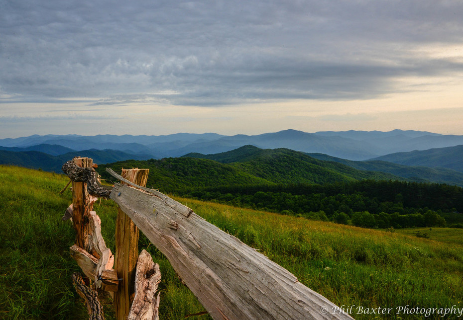 Max Patch Fence Line 6-21-19