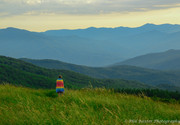 Immersed in the Grandeur of Max Patch 6-21-19
