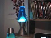 New 52 oz blue liquid white wax