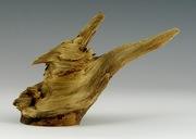 Wood Knot