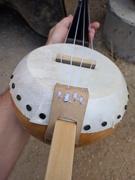 Gourd Banjo 12