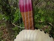 Gourd Banjo #13