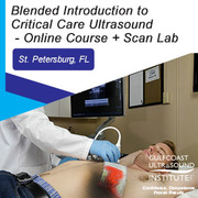 Blended Introduction to Critical Care Ultrasound