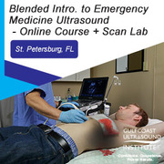 Blended Introduction to Emergency Medicine Ultrasound