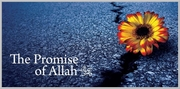 The promise of Allah