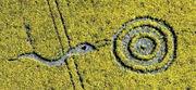 2010 Crop Circle (fake)