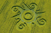 2009 Crop Circle