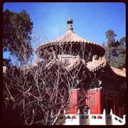 Imperial Garden Yu Hua in Forbidden City Beijing China