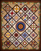 Johnny Marzetti--A Little Bit of Everything Sampler Quilt