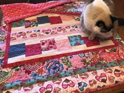 Finished another quilt. This one is to cover my ironing board to keep cat hair off. My cats love the Minkee rose swirl fabric.