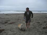 Happy off leash....