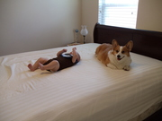 Helping changing the sheets for our guests' arrival.