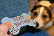 Søren's First Birthday
