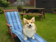On my lounger