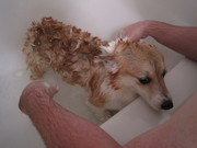 ...I hate baths