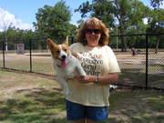6/25/11 Houston Area Meetup at Bay Area Dog Park