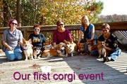 corgi meet up