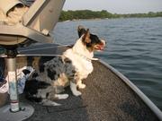 Went fishing again! Lulu seemed more comfortable.