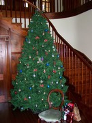 Christams tree beside the staircase main entrance @ Langi Dorn