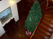 Christmas tree @ Langi Dorn view from upstairs Balcony