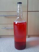RedRed Lunar bottle