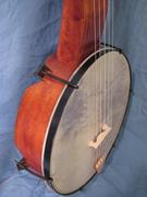 banjo detail