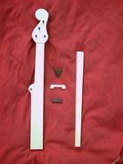 my Ebay 'kit' neck