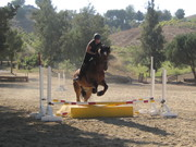 Meadows Eventing Practices