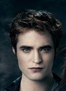 """The Twilight Saga!!"""