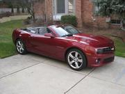 My Camaro pictures(conv. and reg.)