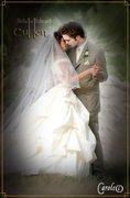 bella-cullen-wedding-dress-