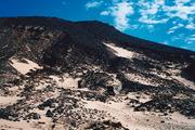 Black and White Desert