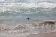 Kiah at 2nd Beach