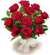 middle12 red roses karachi