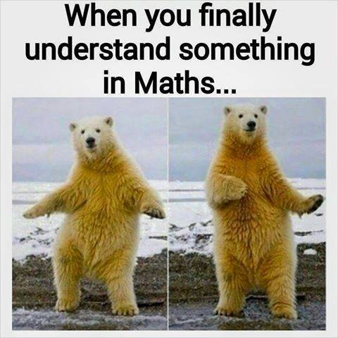 When you finally understand something in Maths.... :P :P