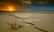 You are not a drop - Rumi Quotes