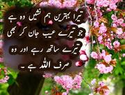 wo-siraf-allah-rabbul-izzat-hai-islamic-quote-in-urdu