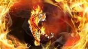 tigeronfire3