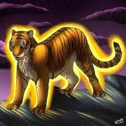 tigeronfire4