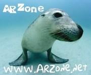ARZone Sea Lion