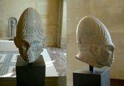 elongated heads