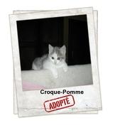 Croque-Pomme