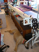 Kula in quilting room 2