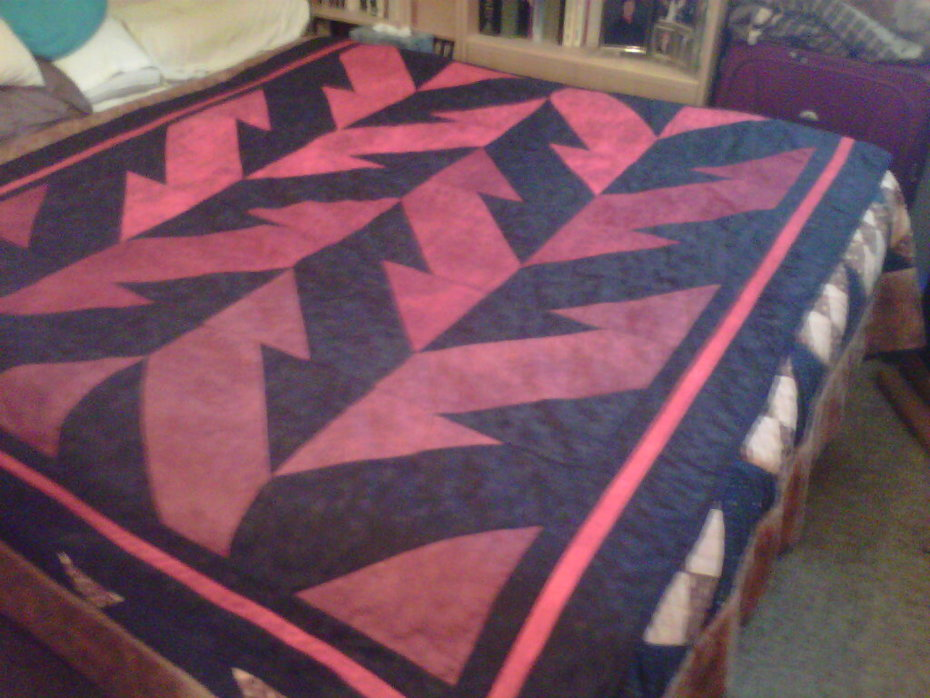 What Goes Up Quilt